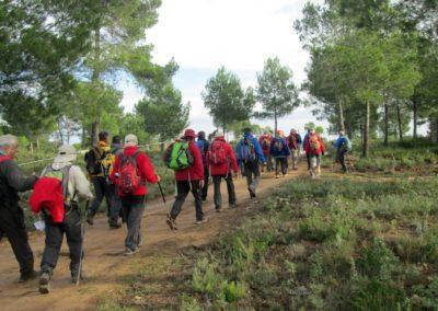 2018-11-21 Yatova-Los Cucos-Cueva de las Palomas-Yatova(102)