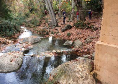 2018-11-21 Yatova-Los Cucos-Cueva de las Palomas-Yatova(119)