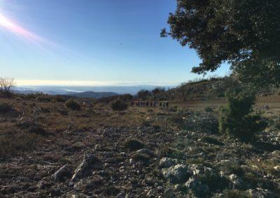 2019-02-06 Osset-Penya Parda-Osset(105)