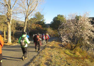 2019-02-13 SieteAguas-La Vallesa-Baranco Tejerias-Siete Aguas(102)