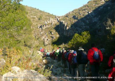 2019-02-13 SieteAguas-La Vallesa-Baranco Tejerias-Siete Aguas(103)
