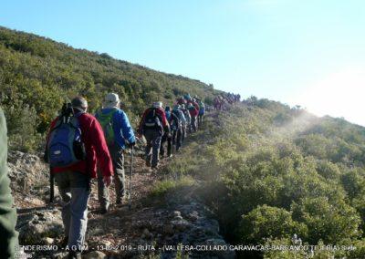 2019-02-13 SieteAguas-La Vallesa-Baranco Tejerias-Siete Aguas(110)