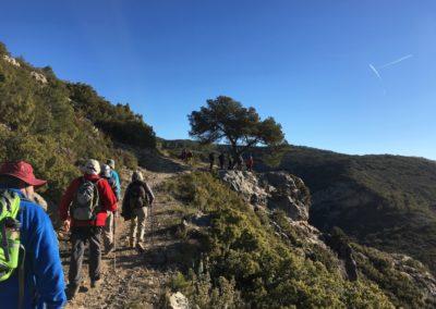 2019-02-13 SieteAguas-La Vallesa-Baranco Tejerias-Siete Aguas(113)
