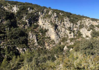 2019-02-13 SieteAguas-La Vallesa-Baranco Tejerias-Siete Aguas(119)
