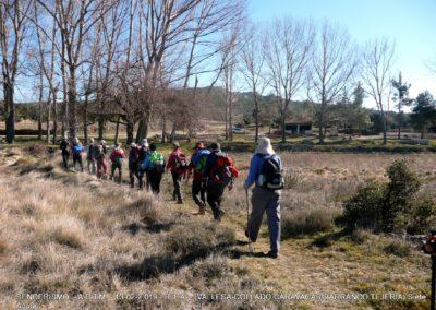2019-02-13 SieteAguas-La Vallesa-Baranco Tejerias-Siete Aguas(120)