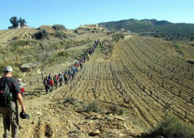 2019-02-13 SieteAguas-La Vallesa-Baranco Tejerias-Siete Aguas(124)