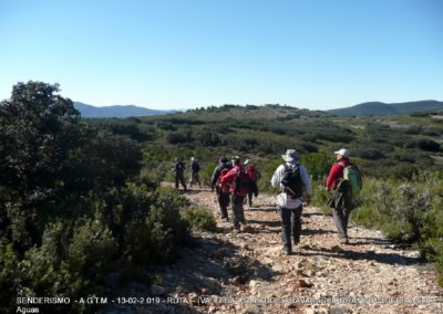 2019-02-13 SieteAguas-La Vallesa-Baranco Tejerias-Siete Aguas(126)