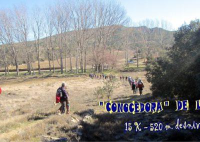 2019-02-13 SieteAguas-La Vallesa-Baranco Tejerias-Siete Aguas(134)