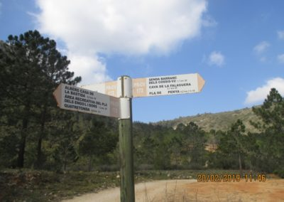 2019-02-20 Quatretonda-El Mollo-Cava de la Folguera-Pinet (111)