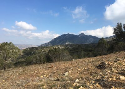 2019-02-20 Quatretonda-El Mollo-Cava de la Folguera-Pinet (112)