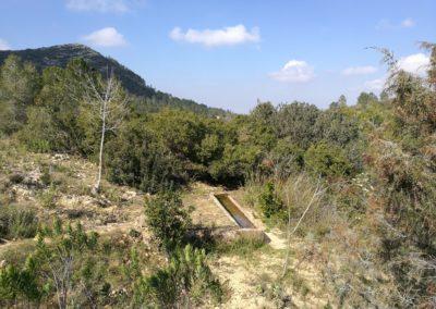 2019-02-20 Quatretonda-El Mollo-Cava de la Folguera-Pinet (116)
