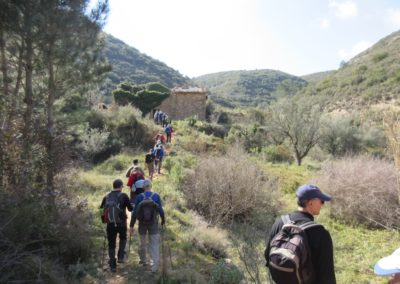 2019-02-20 Quatretonda-El Mollo-Cava de la Folguera-Pinet (118)