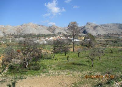 2019-02-20 Quatretonda-El Mollo-Cava de la Folguera-Pinet (125)