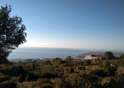2019-02-27 Sierra de Irta-El Pinar-Campanilles-Sta. Magdalena de Pulpis(101)