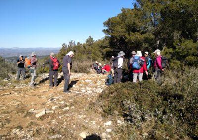 2019-02-27 Sierra de Irta-El Pinar-Campanilles-Sta. Magdalena de Pulpis(107)