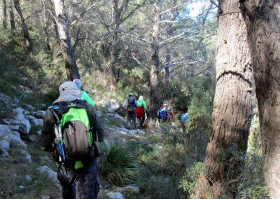 2019-02-27 Sierra de Irta-El Pinar-Campanilles-Sta. Magdalena de Pulpis(109)