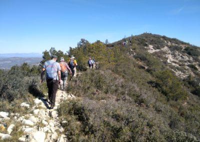 2019-02-27 Sierra de Irta-El Pinar-Campanilles-Sta. Magdalena de Pulpis(110)