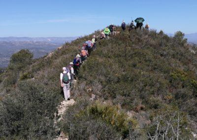 2019-02-27 Sierra de Irta-El Pinar-Campanilles-Sta. Magdalena de Pulpis(119)