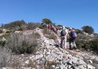 2019-02-27 Sierra de Irta-El Pinar-Campanilles-Sta. Magdalena de Pulpis(123)