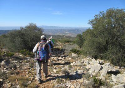 2019-02-27 Sierra de Irta-El Pinar-Campanilles-Sta. Magdalena de Pulpis(126)