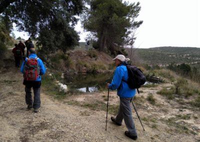 2019-03-06 Sierra de Enguera-Altos Salomon-Fuentes Navalon(109)