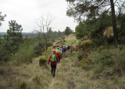 2019-03-06 Sierra de Enguera-Altos Salomon-Fuentes Navalon(121)