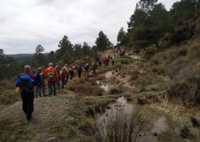 2019-03-06 Sierra de Enguera-Altos Salomon-Fuentes Navalon(124)