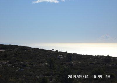 2019-04-10 Sierra de Olta(121)