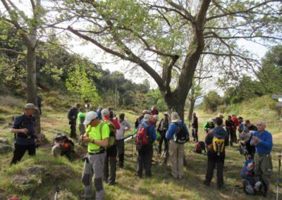 2019-04-17 Circular Caudiel-Pico de las Palomas(103)