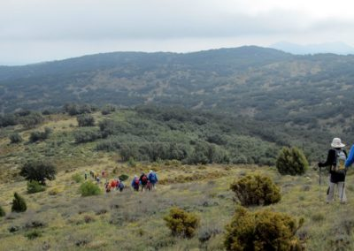 2019-04-17 Circular Caudiel-Pico de las Palomas(118)