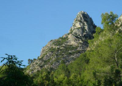 2019-05-15 Vallada-Serra Grosa-Alto de Eixa-Vallada(104)