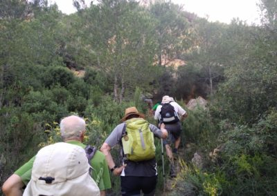 2019-05-15 Vallada-Serra Grosa-Alto de Eixa-Vallada(122)