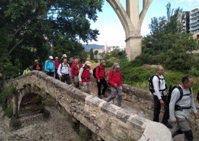 2019-05-22 Alcoy-Pico de la Serreta-Ojo del Moro-Alcoy(103)