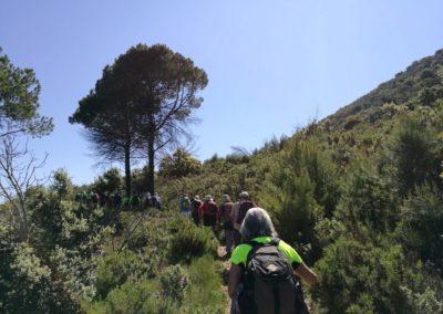 2019-05-22 Alcoy-Pico de la Serreta-Ojo del Moro-Alcoy(109)
