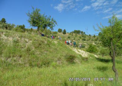 2019-05-22 Alcoy-Pico de la Serreta-Ojo del Moro-Alcoy(113)