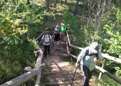 2019-05-22 Alcoy-Pico de la Serreta-Ojo del Moro-Alcoy(116)