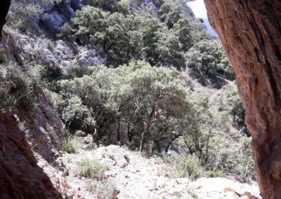 2019-05-22 Alcoy-Pico de la Serreta-Ojo del Moro-Alcoy(132)