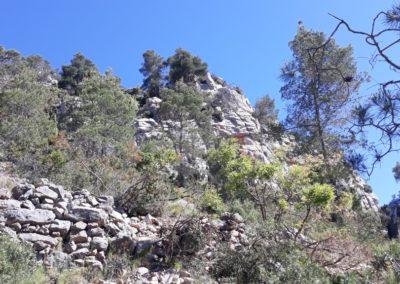 2019-05-29 Montanejos-Sendenro La Bojera-Barranco de Mainera(108)