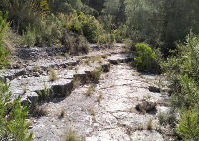 2019-06-05 Pedralba-Rio Turia (110)