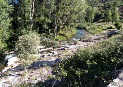 2019-06-12 Rio Mijares-Azud del Molinete(109)