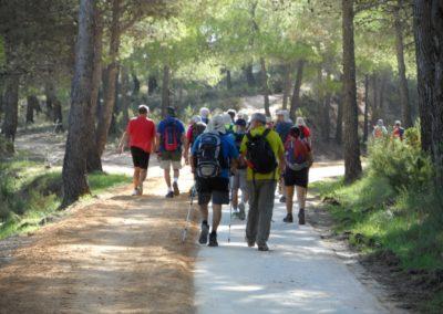 2019-09-18 Dup. Ruta verde de Alcoy-Pinturas Cuevas La sagra(107)