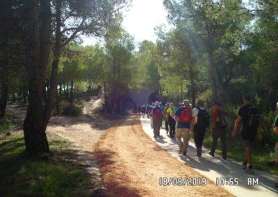 2019-09-18 Dup. Ruta verde de Alcoy-Pinturas Cuevas La sagra(109)