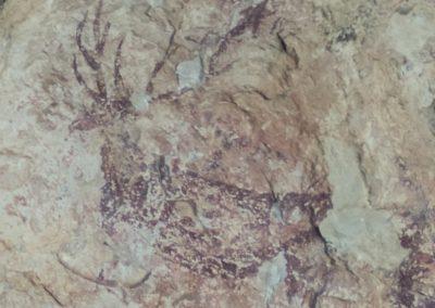 2019-09-18 Dup. Ruta verde de Alcoy-Pinturas Cuevas La sagra(119)