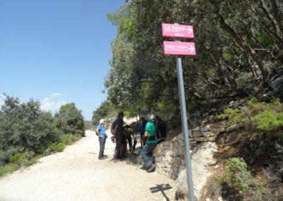 2019-09-18 Dup. Ruta verde de Alcoy-Pinturas Cuevas La sagra(122)