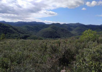 2019-09-25 Aloder-PRCV-398-El Madroñal-Los Morrones(126)