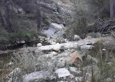 2019-10-16 Villahermosa del Rio-Cascada del Rio Carbo(115)