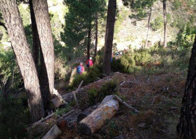 2019-11-13 Ain GR-36 Peñas Blancas-Tossal Gros-Castillo de Benali (111)