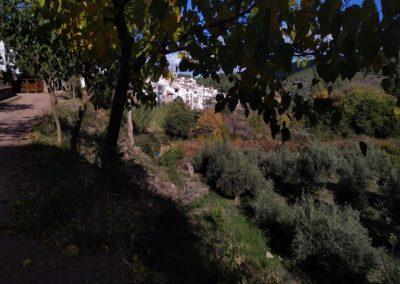 2019-11-13 Ain GR-36 Peñas Blancas-Tossal Gros-Castillo de Benali (122)