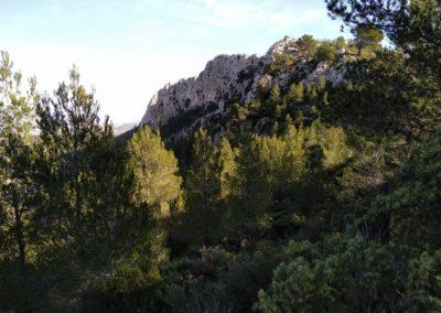 2019-11-20 Font de la Figuera-El Silla (126)
