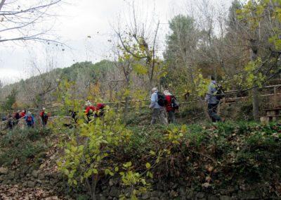 2019-11-27 Banyeres-La Blasca (104)